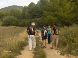 03_excursion-al-pil_-de-la-creu-2006-10-28-s