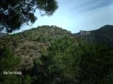 almedijar-nati-070