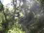 080705 Cerro Gordo - Barranco de Almanzor