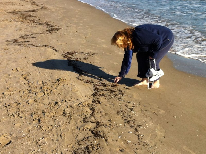 Recogiendo conchas