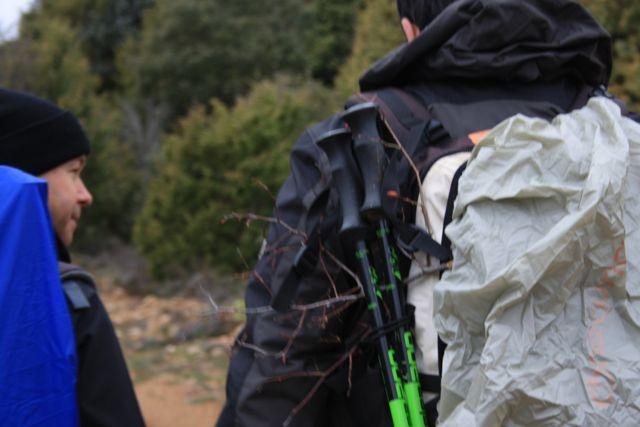 Detalle de una rama enganchada