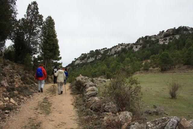 Camino de la Masia d\'en Torres