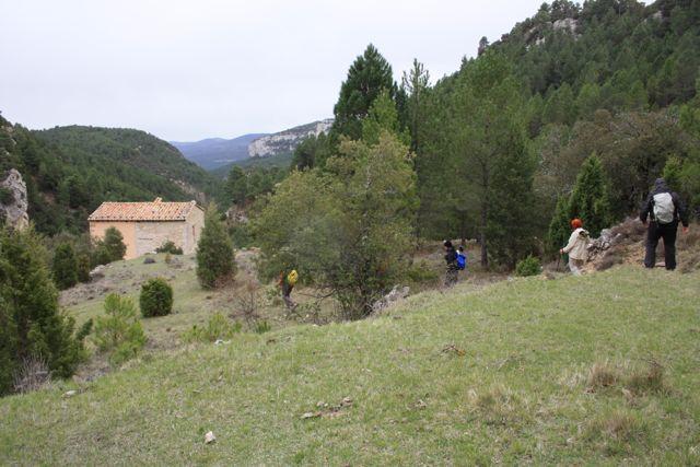 Prado y Torre de la Carcellera