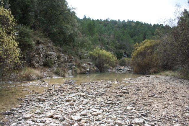 Vista del rio