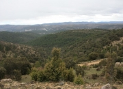 Barranco de la Carcellera