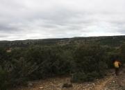 Panoramica siguiendo el pr
