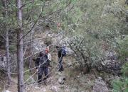Camino Enmarañado