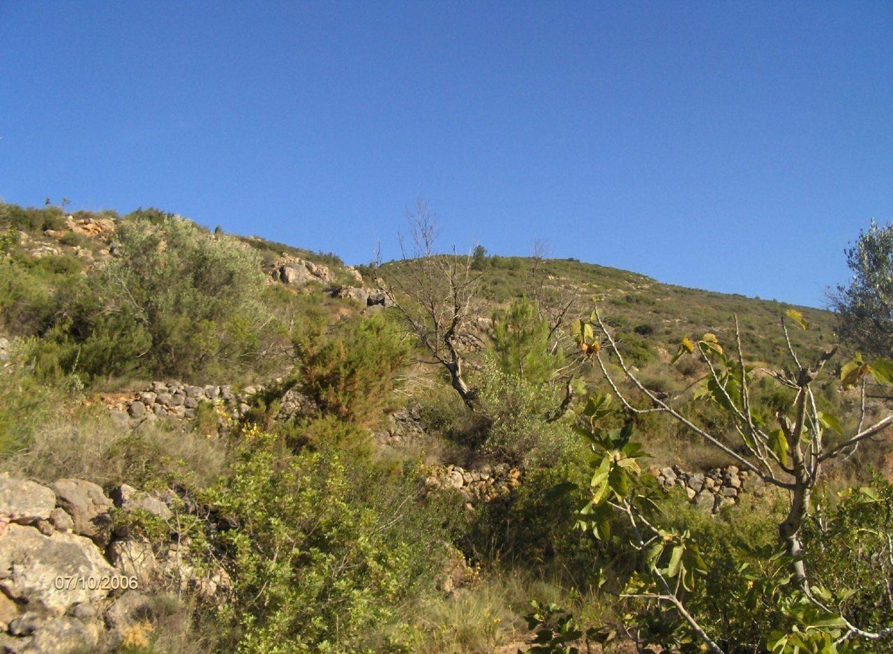 12_excursion-a-espadilla-2006-10-07-s