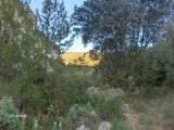 16_excursion-a-espadilla-2006-10-07-s