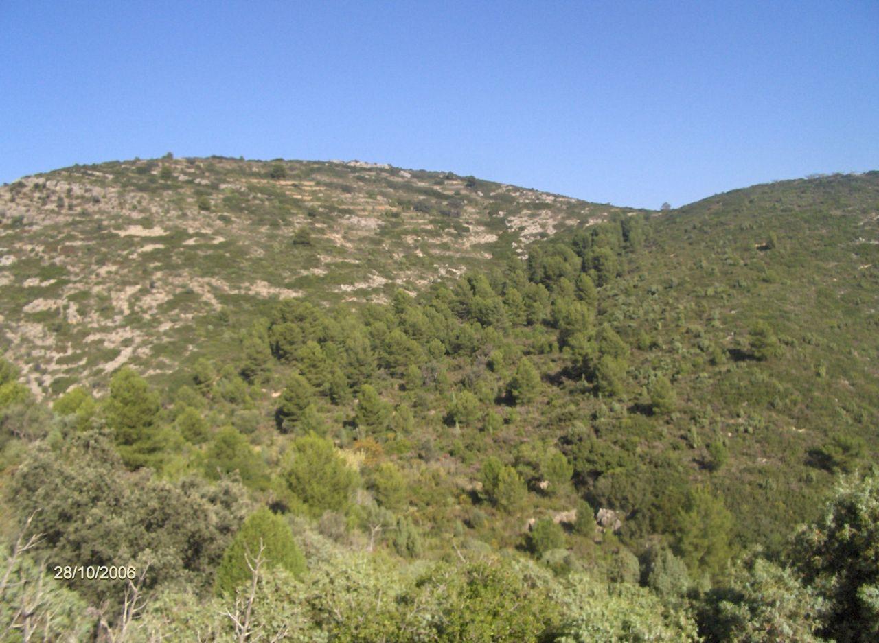 23_excursion-al-pil_-de-la-creu-2006-10-28-s