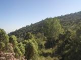 21_excursion-al-pil_-de-la-creu-2006-10-28-s