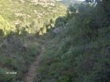 24_excursion-al-pil_-de-la-creu-2006-10-28-s