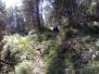 070325 Sueras-Villamalur-Sueras