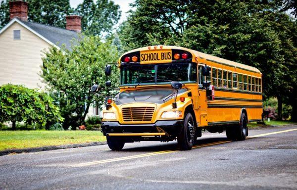 bus-940x601